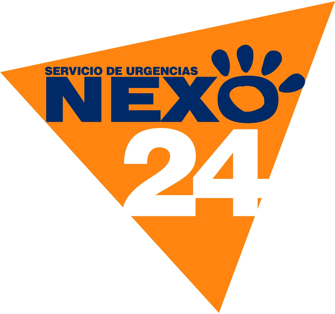NEXO 24 COLOR (1)